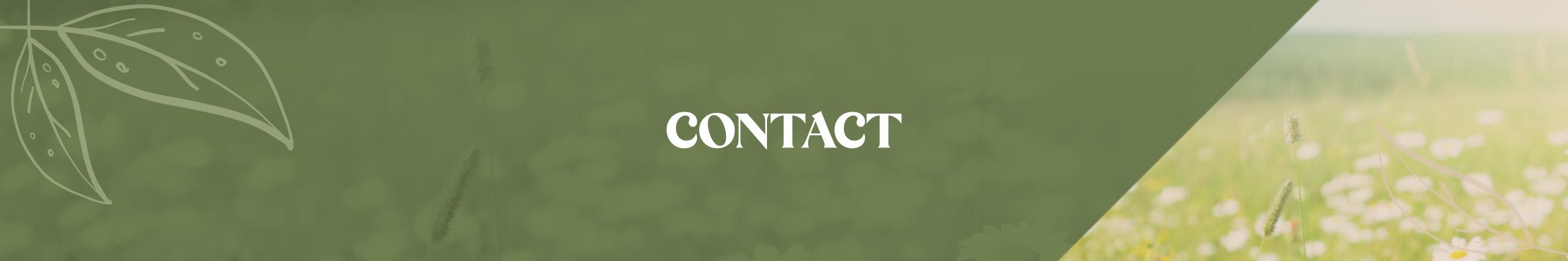 Campagne - Bannière Contact