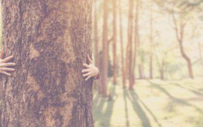 L'écologie et la communication numérique : comment les faire cohabiter ?